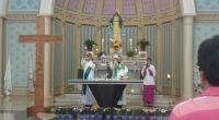 cruz peregrina p. n. das gracas (37)